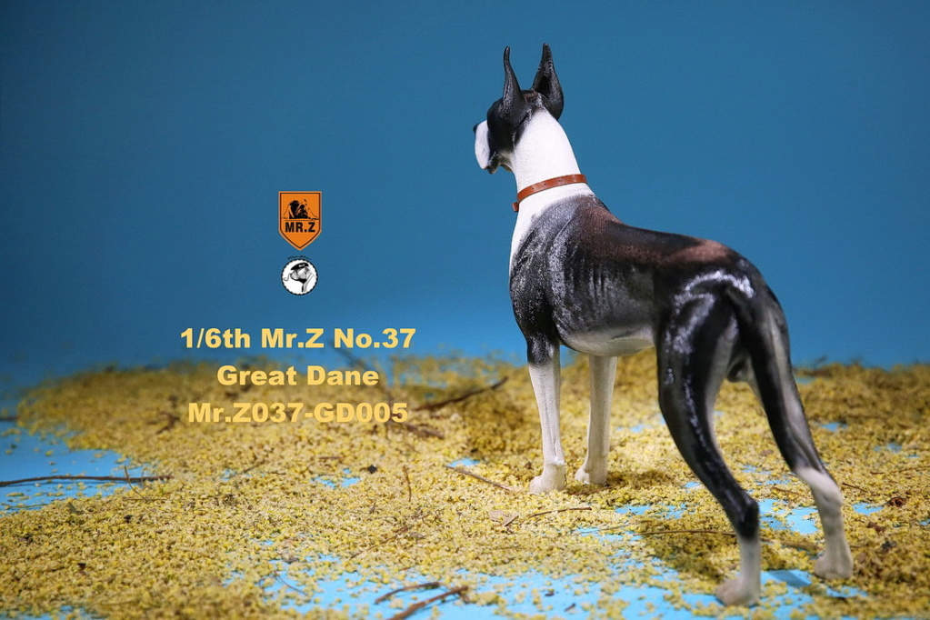 NEW PRODUCT: Mr.Z: simulation animal 37th-1/6 ratio German Great Dane German Great Dane - full set of 6 colors 10103010