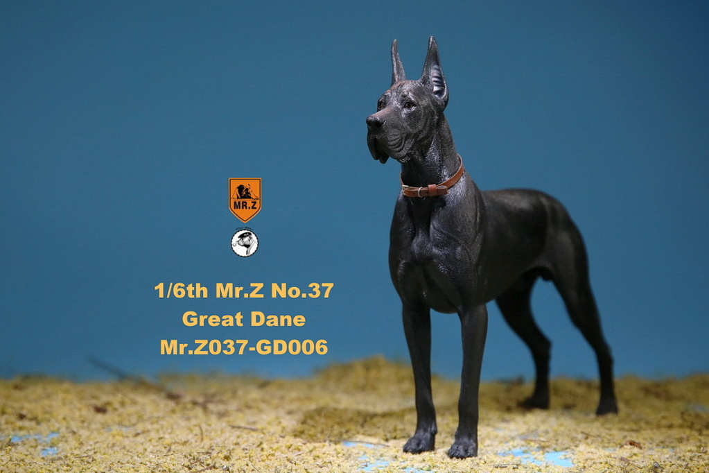 NEW PRODUCT: Mr.Z: simulation animal 37th-1/6 ratio German Great Dane German Great Dane - full set of 6 colors 10110211