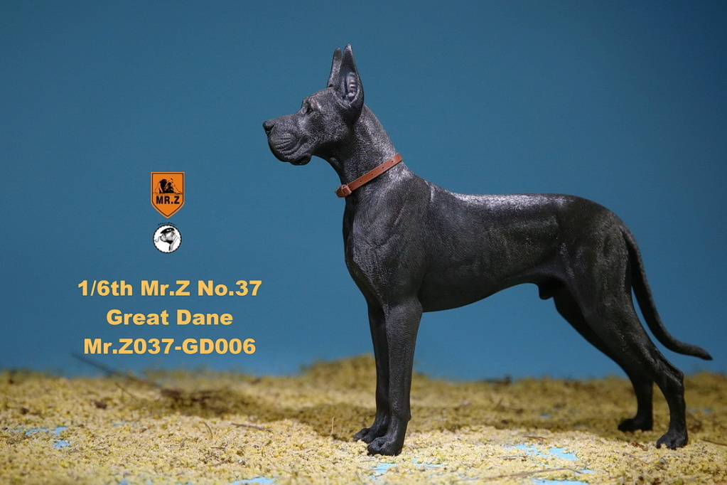 NEW PRODUCT: Mr.Z: simulation animal 37th-1/6 ratio German Great Dane German Great Dane - full set of 6 colors 10110310