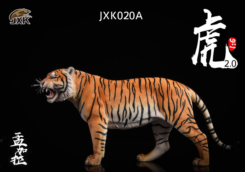 NEW PRODUCT: JXK: 1/6 Bengal Tiger Tiger - 2.0 Roaring & White Tiger Animal Model 11005910