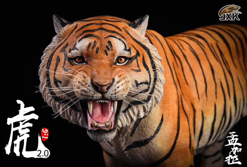 NEW PRODUCT: JXK: 1/6 Bengal Tiger Tiger - 2.0 Roaring & White Tiger Animal Model 11010310
