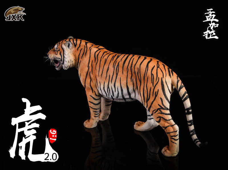 NEW PRODUCT: JXK: 1/6 Bengal Tiger Tiger - 2.0 Roaring & White Tiger Animal Model 11012110