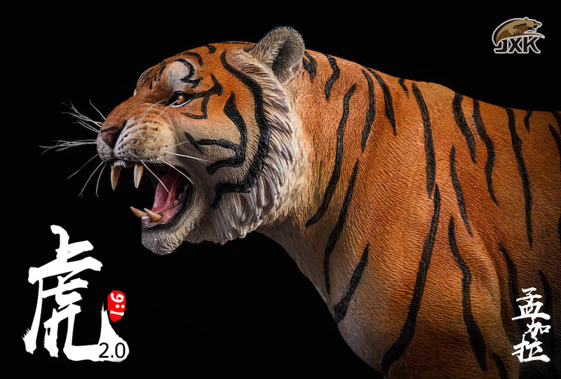 NEW PRODUCT: JXK: 1/6 Bengal Tiger Tiger - 2.0 Roaring & White Tiger Animal Model 11012510