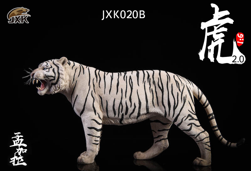 NEW PRODUCT: JXK: 1/6 Bengal Tiger Tiger - 2.0 Roaring & White Tiger Animal Model 11012610