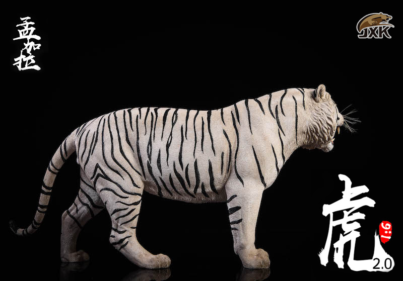 NEW PRODUCT: JXK: 1/6 Bengal Tiger Tiger - 2.0 Roaring & White Tiger Animal Model 11013310