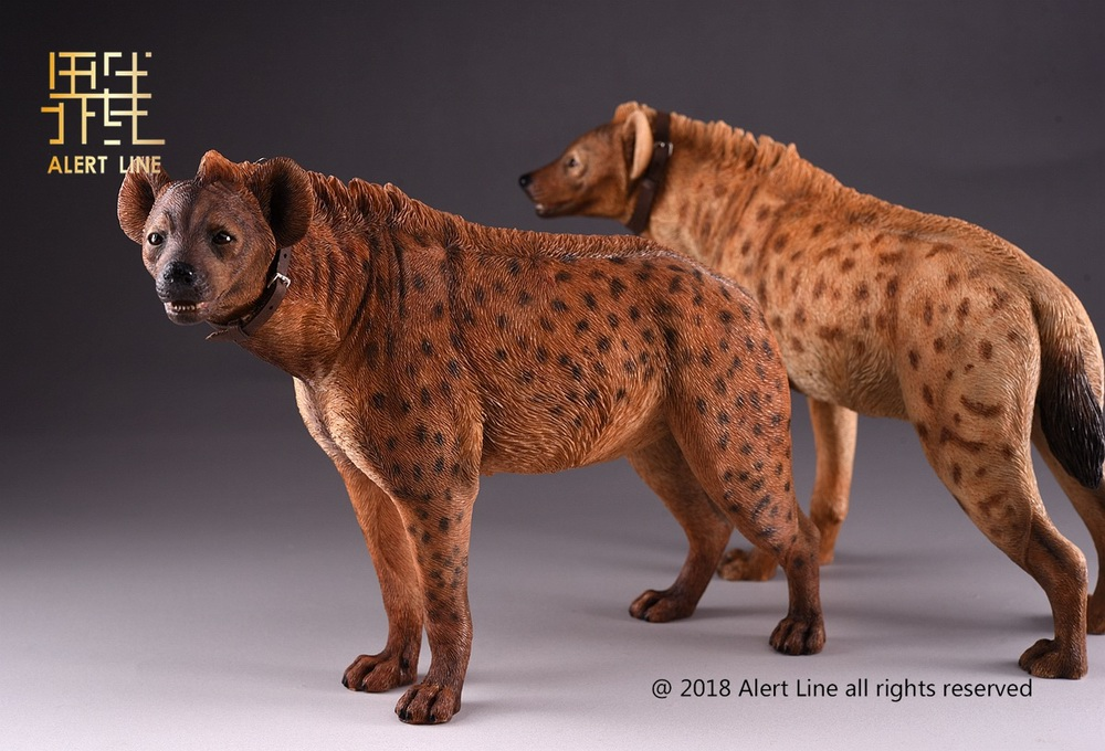 Dog - NEW PRODUCT: Alert Line line play model: 1/6 (Hyena) class dog / Crocuta Crocuta-2 color (AL100025A & B) 19220910