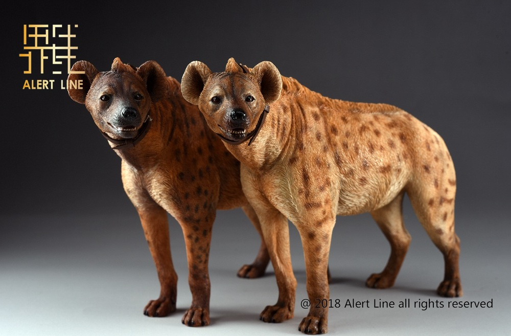 Dog - NEW PRODUCT: Alert Line line play model: 1/6 (Hyena) class dog / Crocuta Crocuta-2 color (AL100025A & B) 19221010