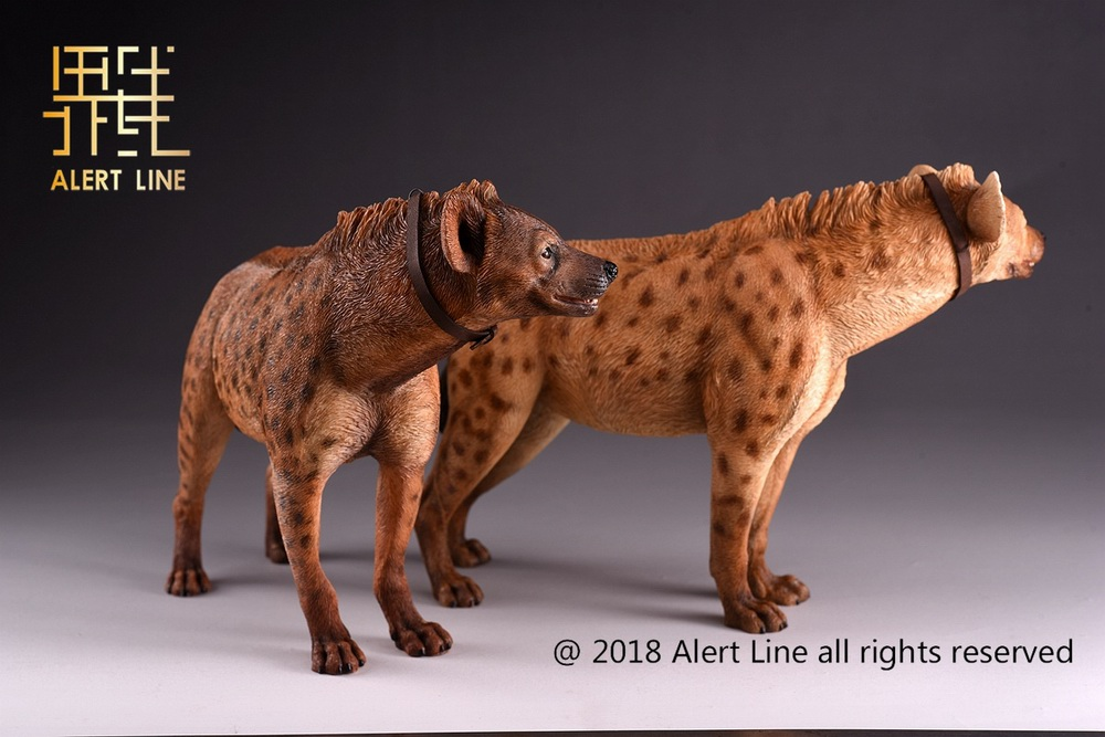 Dog - NEW PRODUCT: Alert Line line play model: 1/6 (Hyena) class dog / Crocuta Crocuta-2 color (AL100025A & B) 19221210
