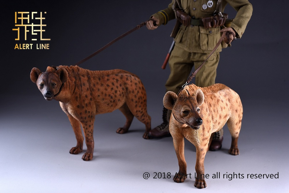 Dog - NEW PRODUCT: Alert Line line play model: 1/6 (Hyena) class dog / Crocuta Crocuta-2 color (AL100025A & B) 19221310