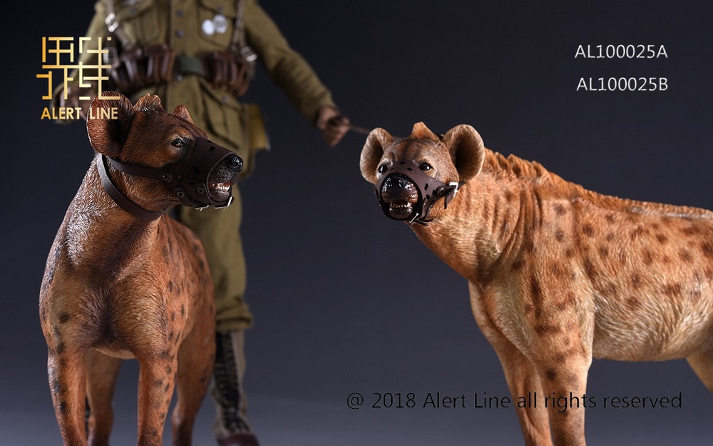 Dog - NEW PRODUCT: Alert Line line play model: 1/6 (Hyena) class dog / Crocuta Crocuta-2 color (AL100025A & B) 19221710