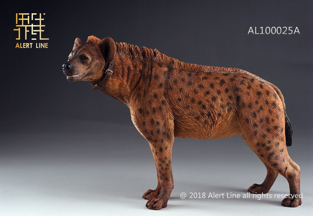 Dog - NEW PRODUCT: Alert Line line play model: 1/6 (Hyena) class dog / Crocuta Crocuta-2 color (AL100025A & B) 19234610