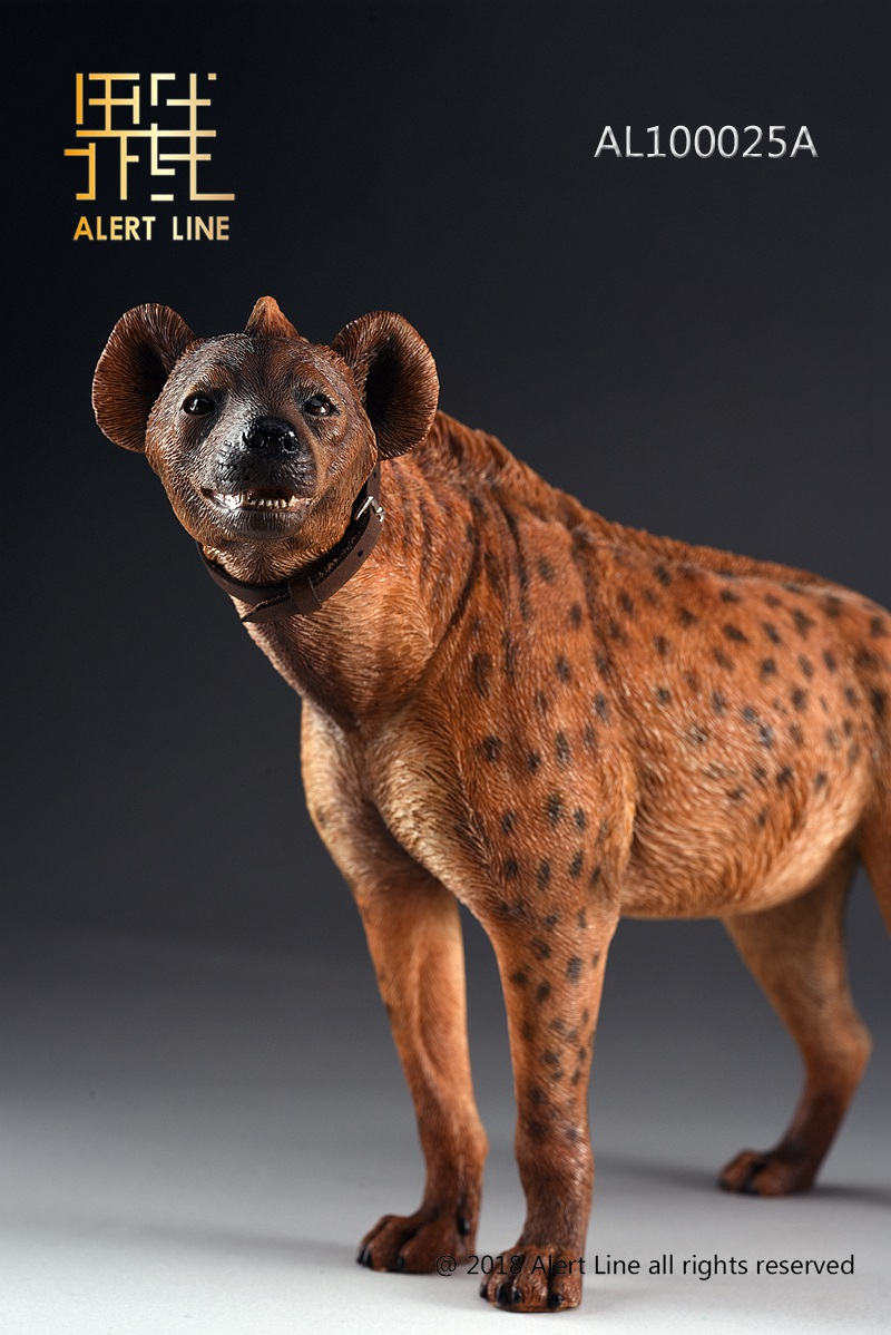Dog - NEW PRODUCT: Alert Line line play model: 1/6 (Hyena) class dog / Crocuta Crocuta-2 color (AL100025A & B) 19234811