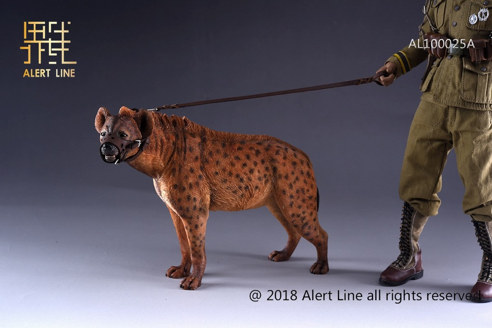 Dog - NEW PRODUCT: Alert Line line play model: 1/6 (Hyena) class dog / Crocuta Crocuta-2 color (AL100025A & B) 19235010