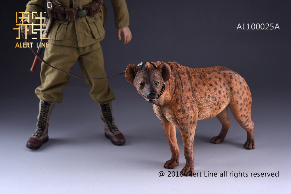 Dog - NEW PRODUCT: Alert Line line play model: 1/6 (Hyena) class dog / Crocuta Crocuta-2 color (AL100025A & B) 19235210