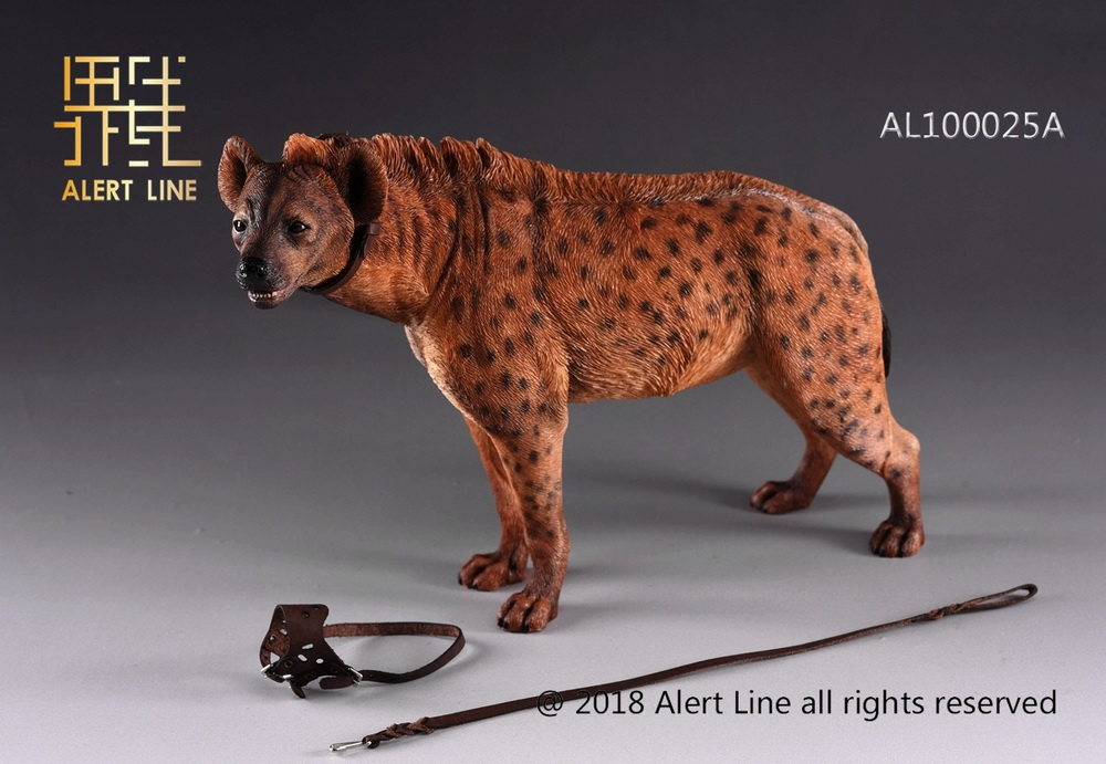Dog - NEW PRODUCT: Alert Line line play model: 1/6 (Hyena) class dog / Crocuta Crocuta-2 color (AL100025A & B) 19235310