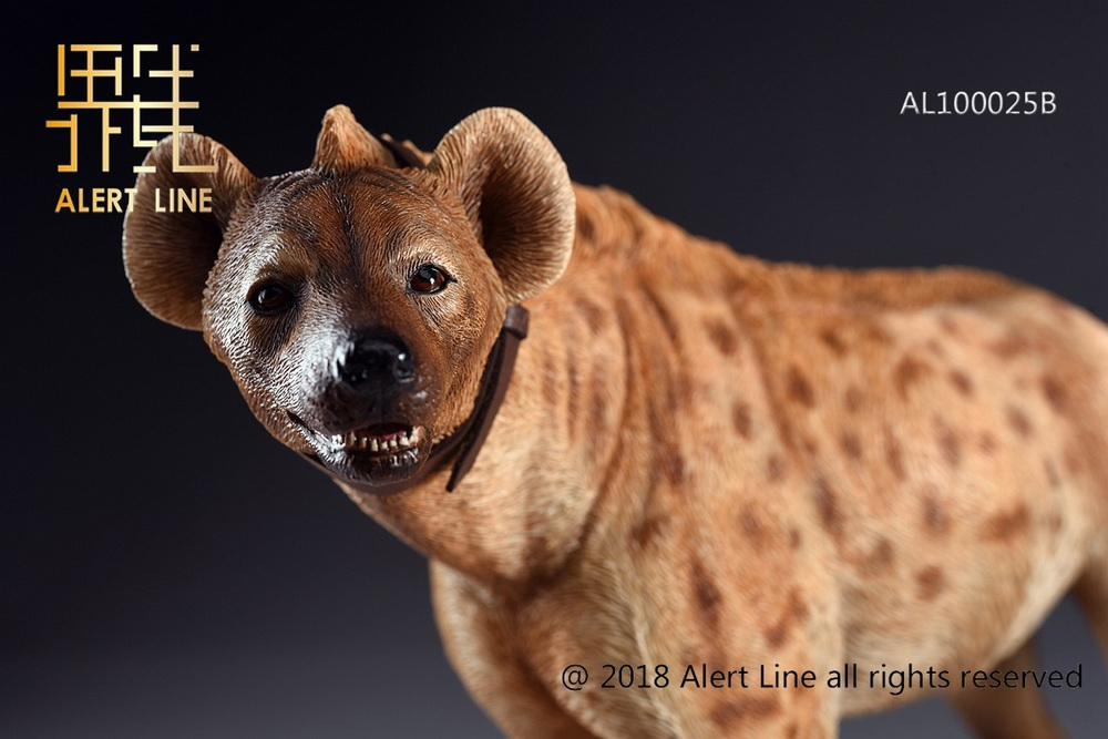 Dog - NEW PRODUCT: Alert Line line play model: 1/6 (Hyena) class dog / Crocuta Crocuta-2 color (AL100025A & B) 19243810