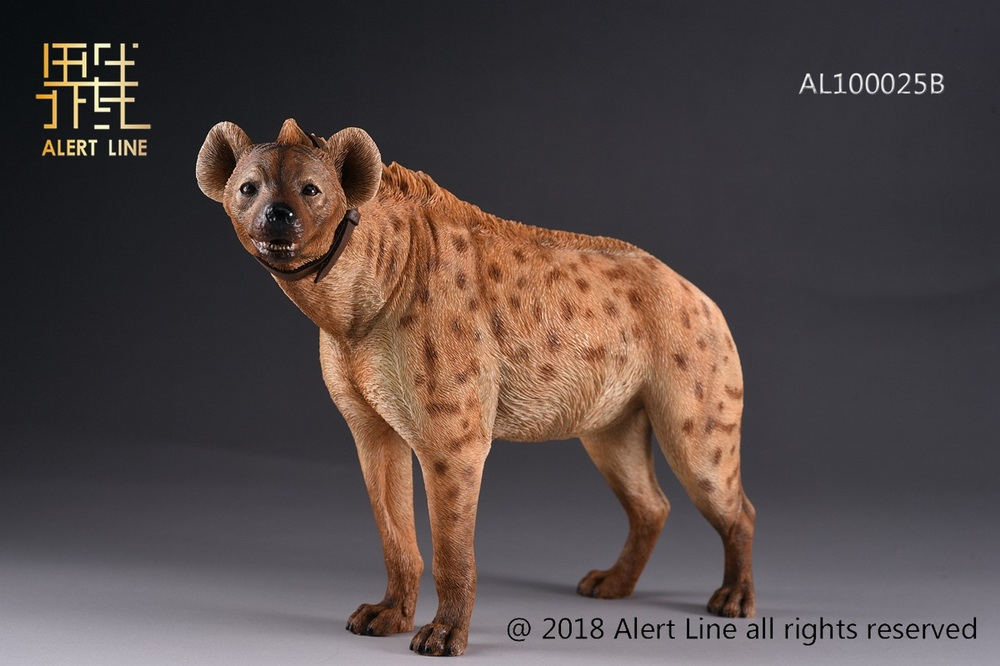 Dog - NEW PRODUCT: Alert Line line play model: 1/6 (Hyena) class dog / Crocuta Crocuta-2 color (AL100025A & B) 19243910