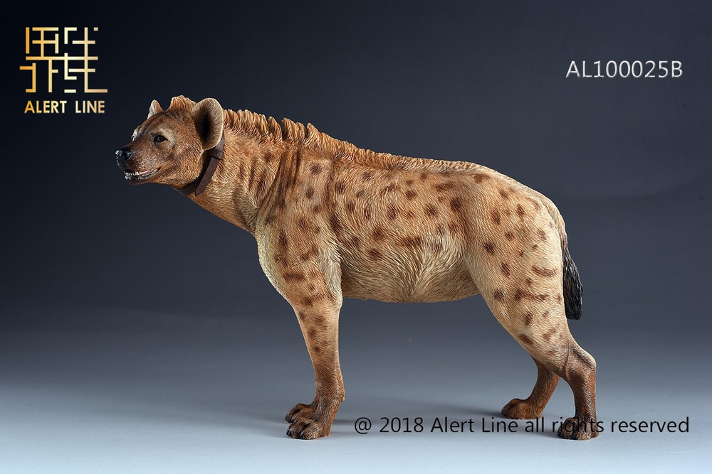Dog - NEW PRODUCT: Alert Line line play model: 1/6 (Hyena) class dog / Crocuta Crocuta-2 color (AL100025A & B) 19243911