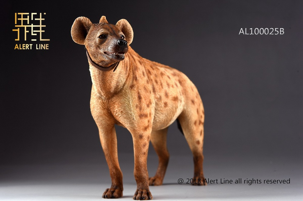 Dog - NEW PRODUCT: Alert Line line play model: 1/6 (Hyena) class dog / Crocuta Crocuta-2 color (AL100025A & B) 19244110