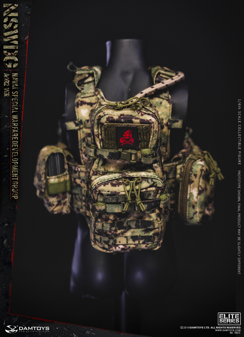 modernmilitary - NEW PRODUCT: DAMTOYS: 1/6 US Navy Special Operations Development Group NSWDG-AOR2 camouflage version 78072 # 20031410