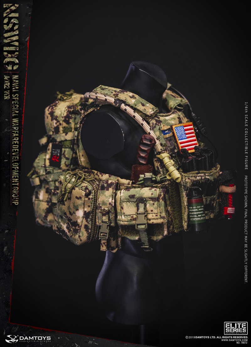 modernmilitary - NEW PRODUCT: DAMTOYS: 1/6 US Navy Special Operations Development Group NSWDG-AOR2 camouflage version 78072 # 20031610