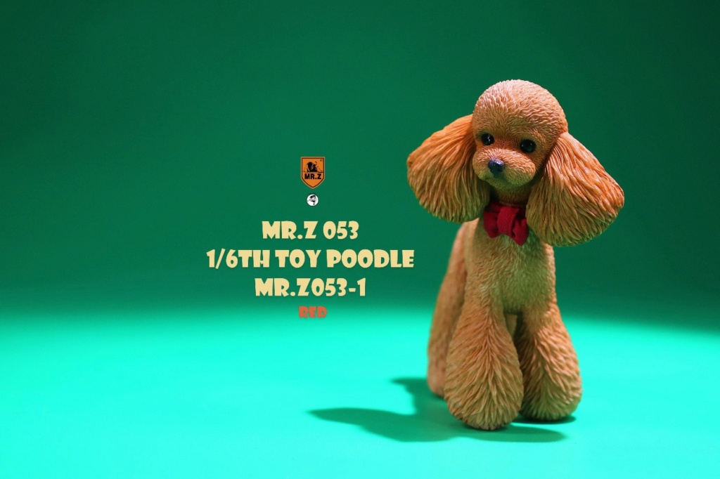 Topics tagged under toypoodle on OneSixthFigures 20871210