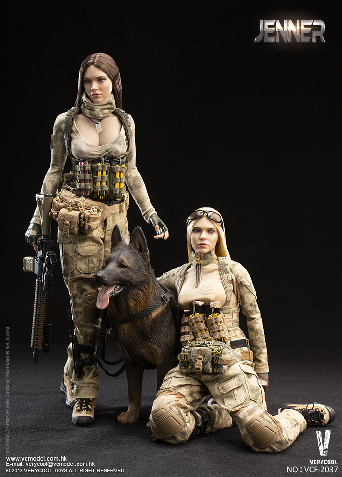 Dog - NEW PRODUCT: VERYCOOL new product: 1/6 ruin camouflage double female soldier - Jenna JENNER movable doll - A section & B section + German shepherd 23180310