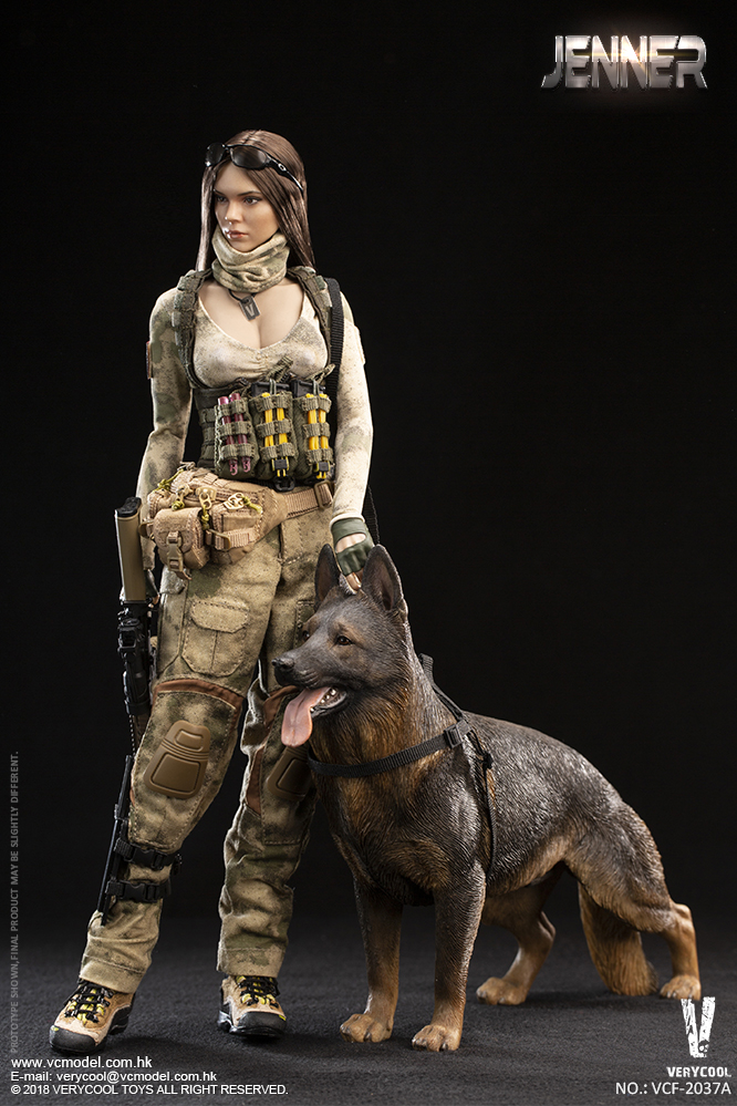 Dog - NEW PRODUCT: VERYCOOL new product: 1/6 ruin camouflage double female soldier - Jenna JENNER movable doll - A section & B section + German shepherd 23180911