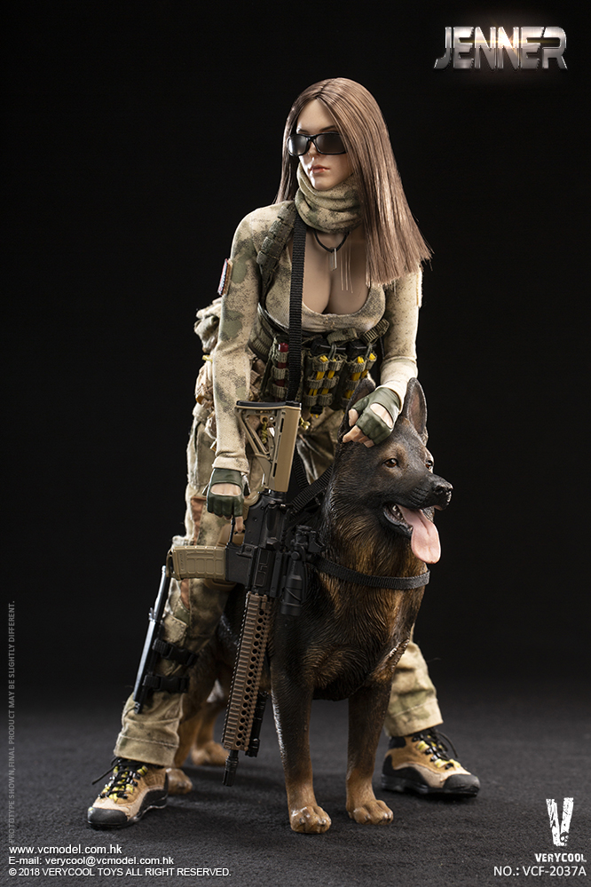Dog - NEW PRODUCT: VERYCOOL new product: 1/6 ruin camouflage double female soldier - Jenna JENNER movable doll - A section & B section + German shepherd 23181010