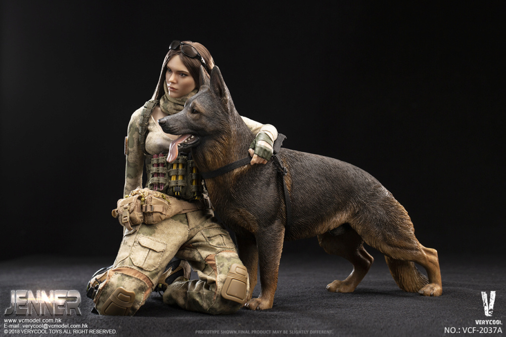 Dog - NEW PRODUCT: VERYCOOL new product: 1/6 ruin camouflage double female soldier - Jenna JENNER movable doll - A section & B section + German shepherd 23181111