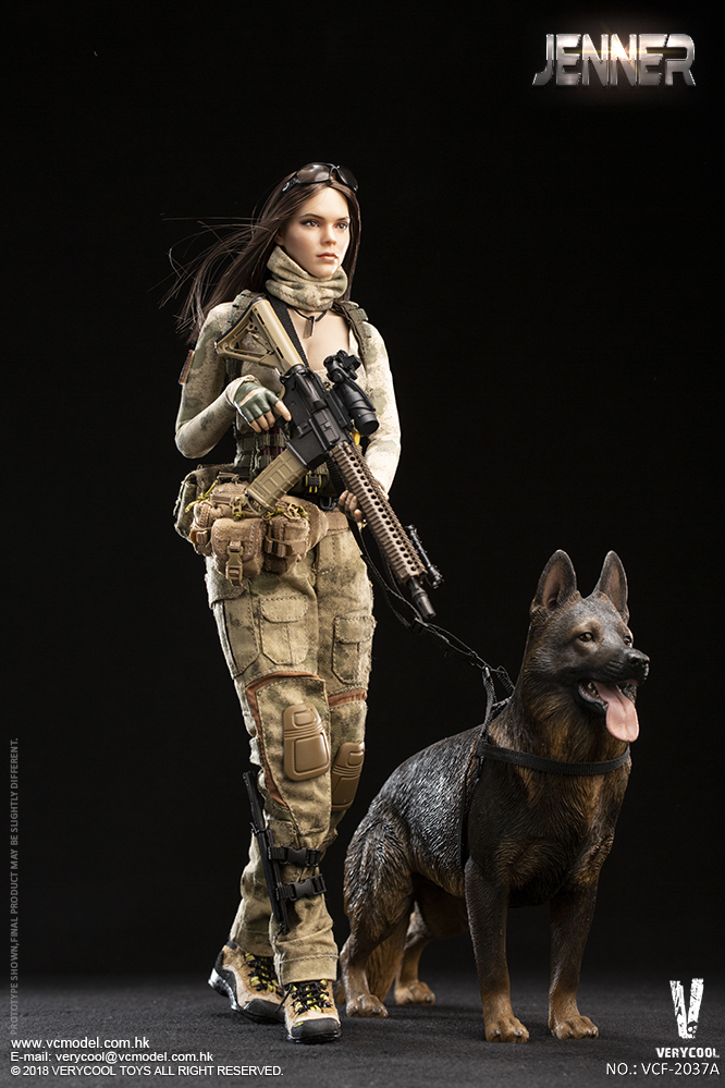 Dog - NEW PRODUCT: VERYCOOL new product: 1/6 ruin camouflage double female soldier - Jenna JENNER movable doll - A section & B section + German shepherd 23241010