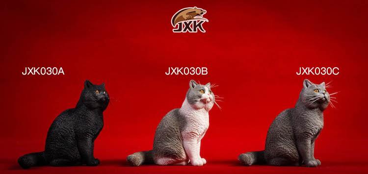 Topics tagged under jxk on OneSixthFigures 2580ad10