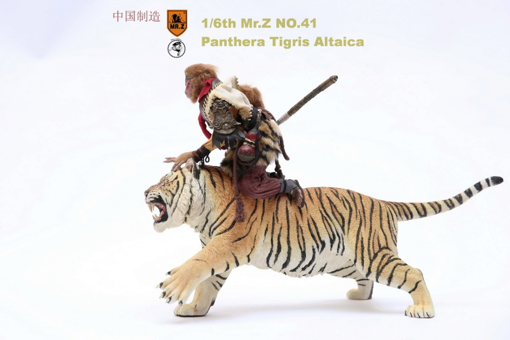 NEW PRODUCT: MR. Z: 1/6 Simulation Animal Model 41st - Siberian Tiger / Siberian Tiger [Planting Edition] - Full set of 3 colors 3286