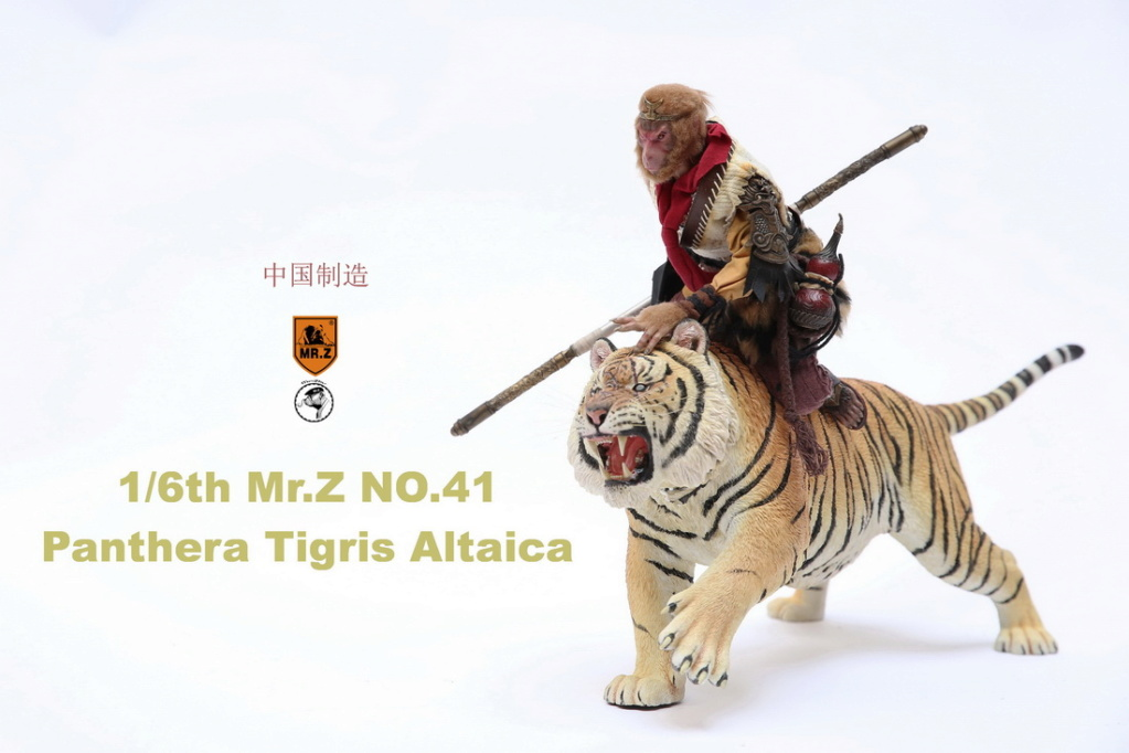 NEW PRODUCT: MR. Z: 1/6 Simulation Animal Model 41st - Siberian Tiger / Siberian Tiger [Planting Edition] - Full set of 3 colors 4262