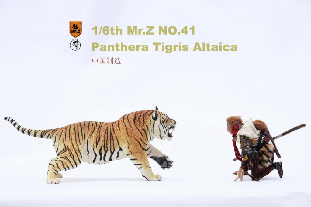 NEW PRODUCT: MR. Z: 1/6 Simulation Animal Model 41st - Siberian Tiger / Siberian Tiger [Planting Edition] - Full set of 3 colors 6242