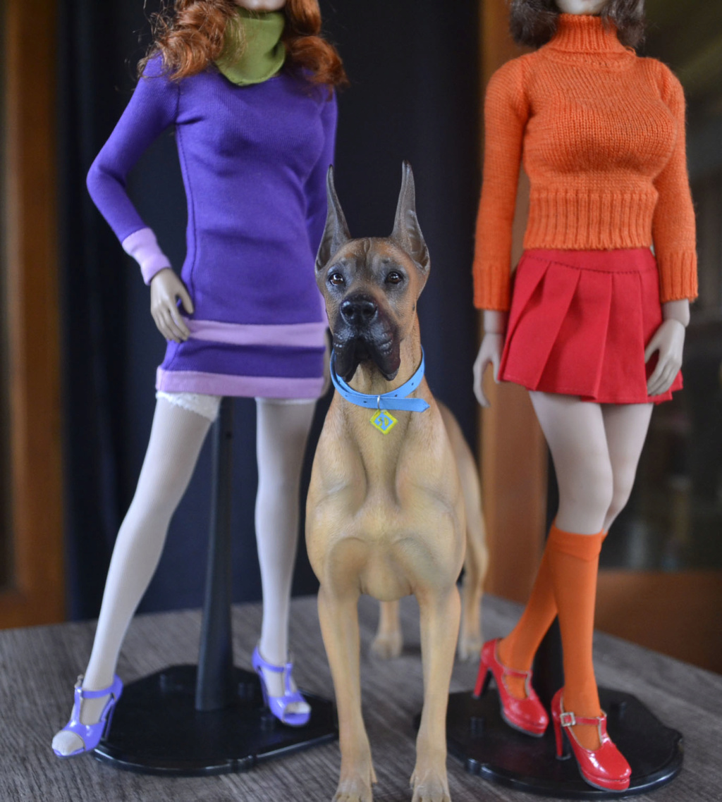 NEW PRODUCT: Mr.Z: simulation animal 37th-1/6 ratio German Great Dane German Great Dane - full set of 6 colors - Page 2 _dsc3262