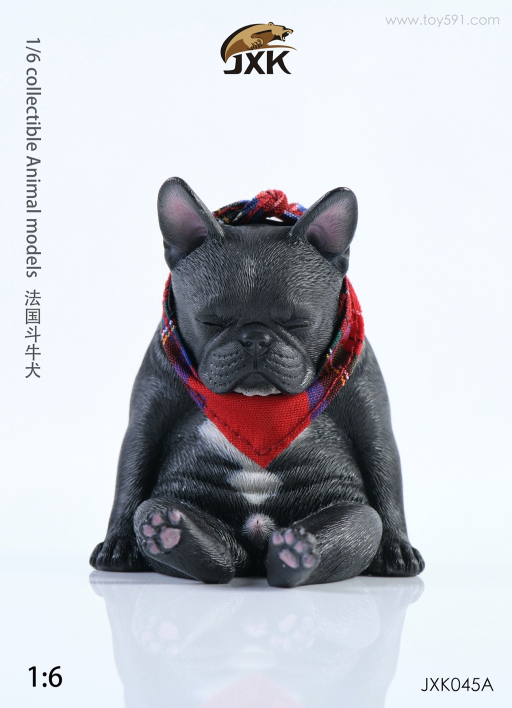 Dog - NEW PRODUCT: JXK 1/6 Decadent Dog JXK045 French Bulldog + Scarf Bf0a1710