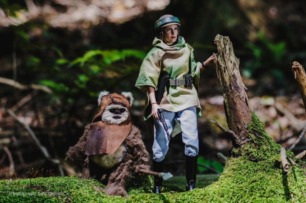 Endor Leia - NEW PRODUCT: HOT TOYS: STAR WARS: RETURN OF THE JEDI PRINCESS LEIA AND WICKET 1/6TH SCALE COLLECTIBLE FIGURES SET Cf8efb10