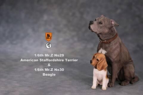 NEW PRODUCT: Mr Z 1/6 MRZ030 BP002 No 30 Animal Model Beagle