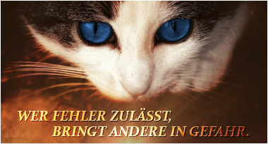 WarriorCats - Schmetterlingseffekt Frostb11