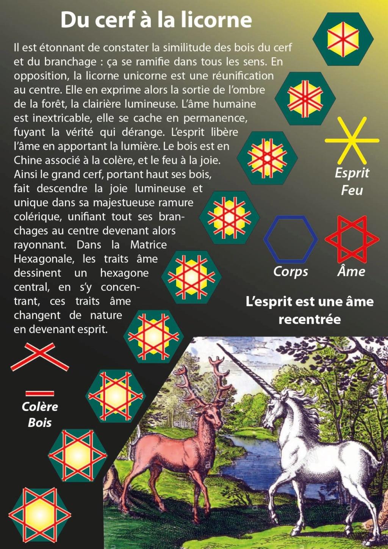 Du Cerf à la licorne 47689310