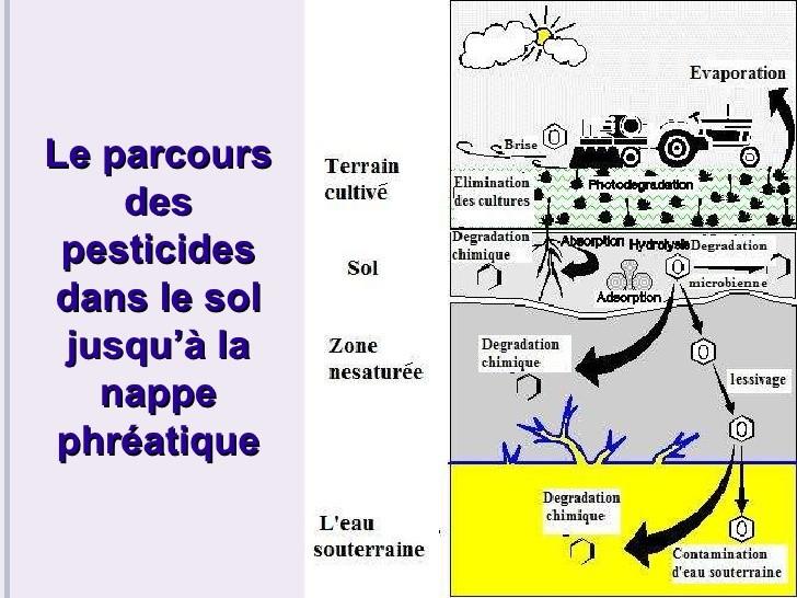 Les pesticides: Un danger pour les eaux québécoises? 410
