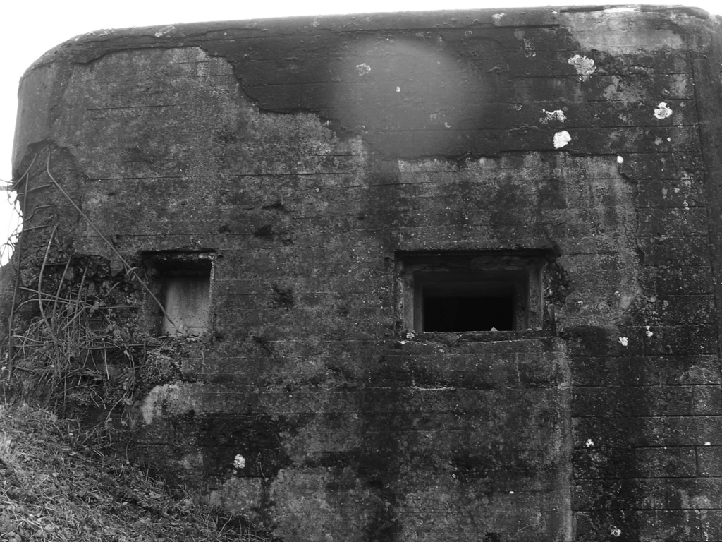Abris betonnés sur la Meuse (Namur-Givet) 13910