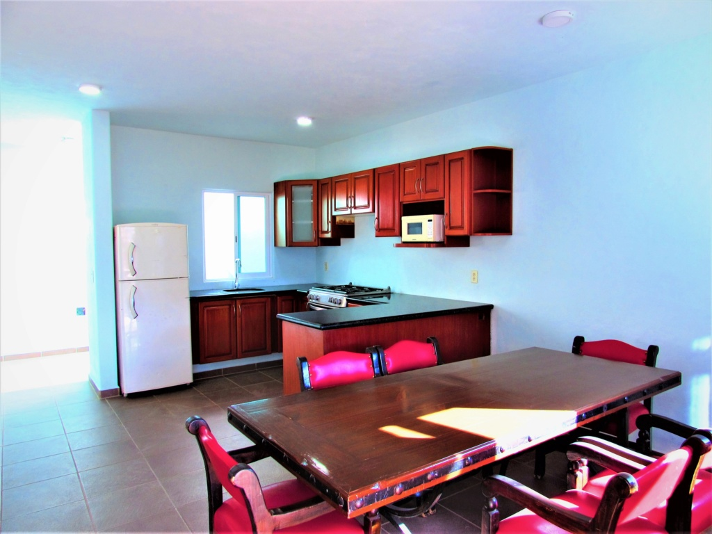 Brand new apartment on San Juan Cosala, pets welcome, semi or fully furnished Img_4111