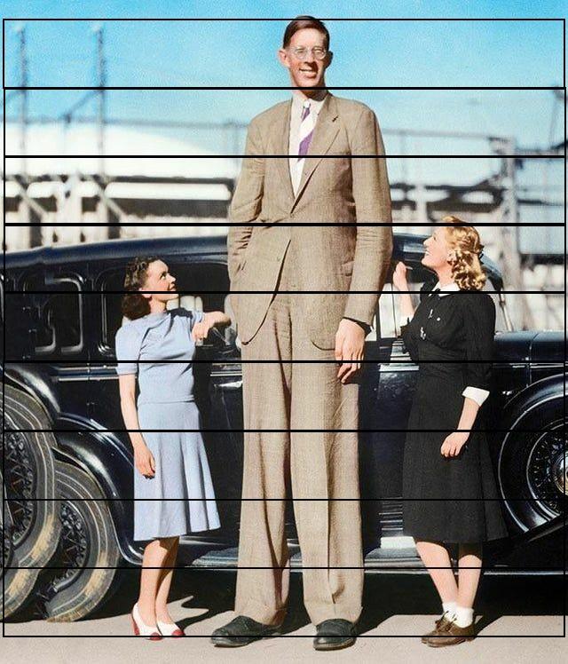 ¿Cuánto mide Robert Wadlow? - Altura - Real height - Página 2 Sr5dqz10