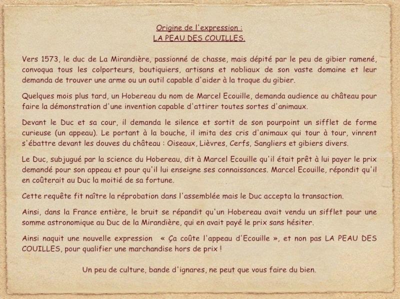 Expressions françaises imagées ! - Page 19 Captu158