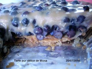 Tarte cochonne aux bleuets Tarte_10