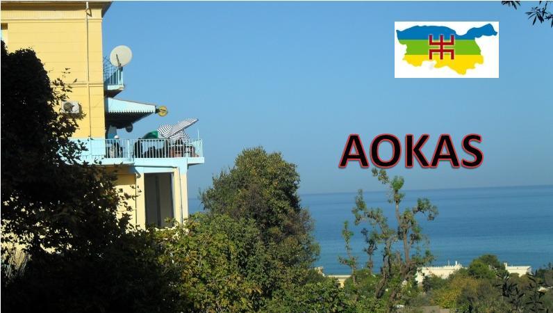 Aokas pour les nostalgiques - Page 40 5111