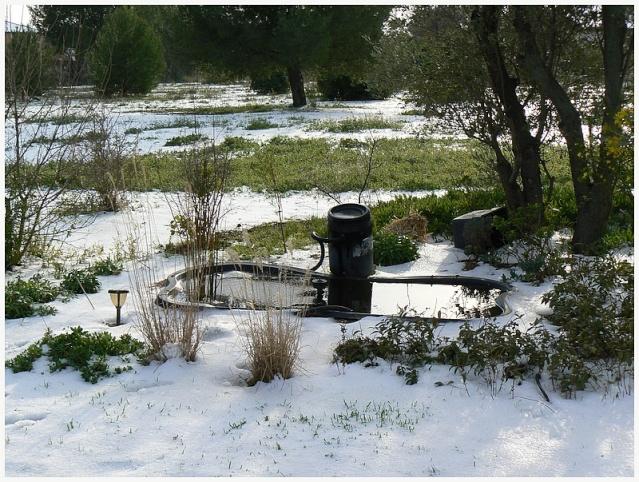 La neige chez Belle des champs  P1080216