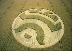 Agroglyphes - Cercle de culture (Crop Circle) Cercle13